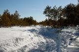 Поле боя со снежной засадой
