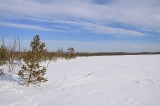 На озере Карасёвое