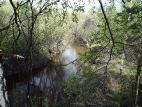 На реке Куяры