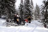 На снежных полянах