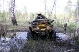 На входе в болото