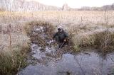 На зрительских точках в болоте