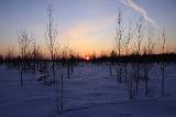 Закат на болотах