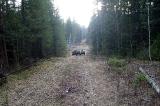 На дороге за рекой Кнов