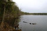 На таёжном озере