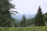 Вид с перевала на долину реки Шинок