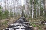 Изготовление гати на болоте