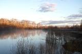 Утро на реке Тара