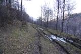 Верхняя дорога вдоль реки Чарыш