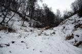 Нижняя дорога к водопадам