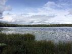 Таёжное озеро-2015